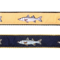 Preston Snook Harness