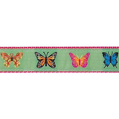 Preston Butterflies Collars & Leads