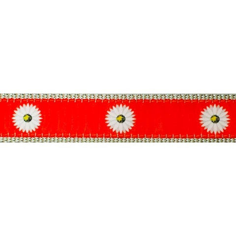 Preston Daisies Collars & Leads