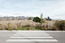Load image into Gallery viewer, no one's land - zebra crossing