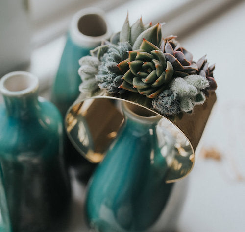 Style it with Succulents