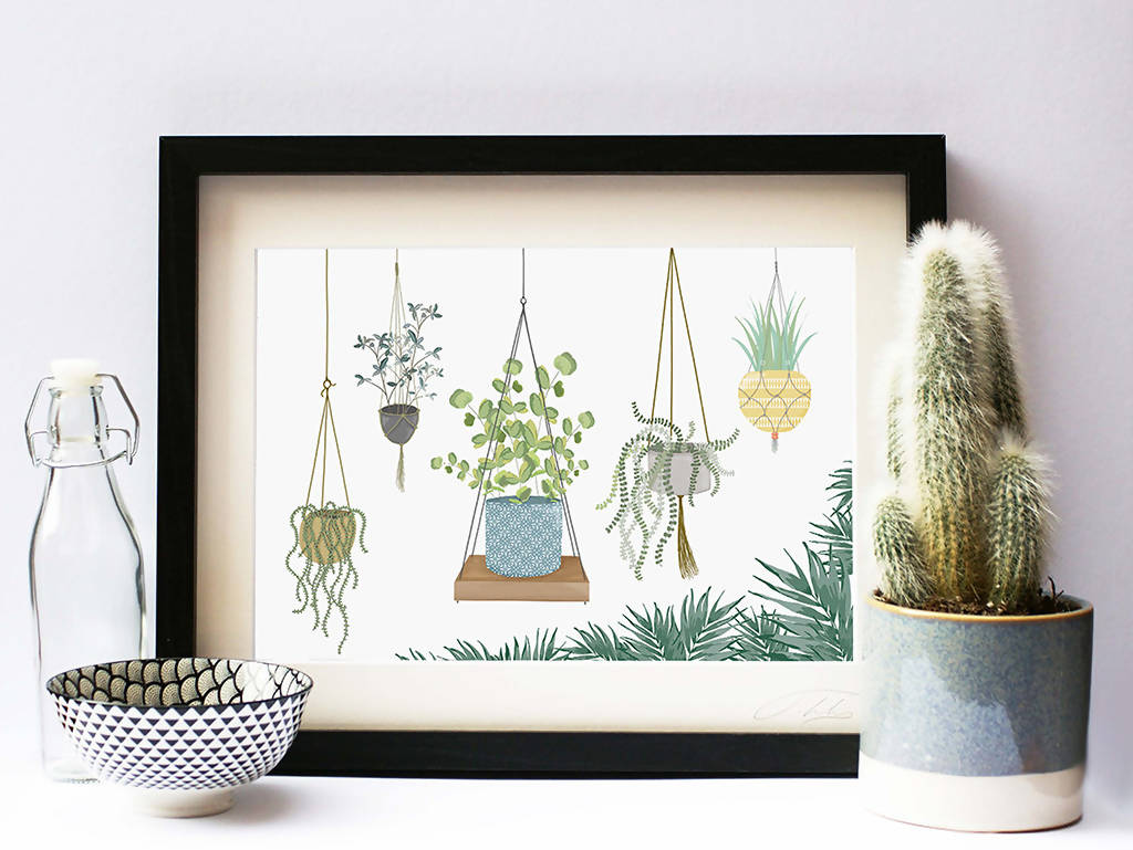 Illustrated Print Hanging Plants Botanical
