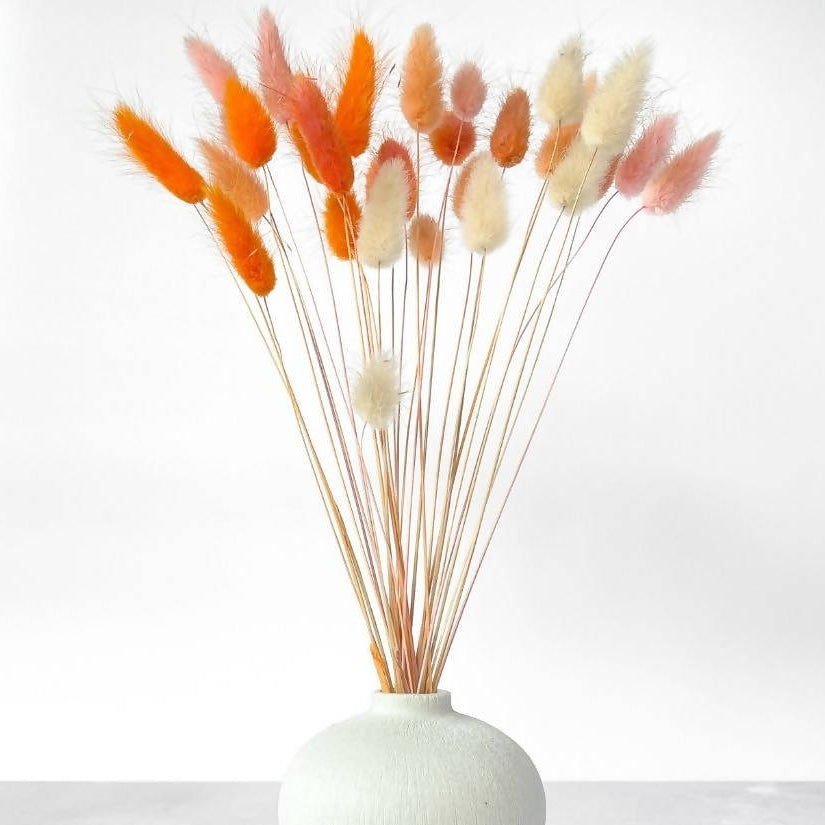 Sunset Ombre Bunny Tail Bouquet