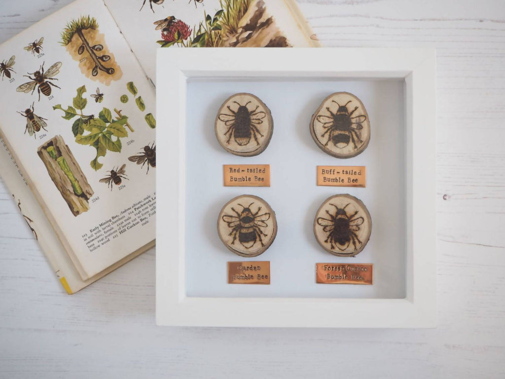 Bumble Bee Wood and Copper Box Frame
