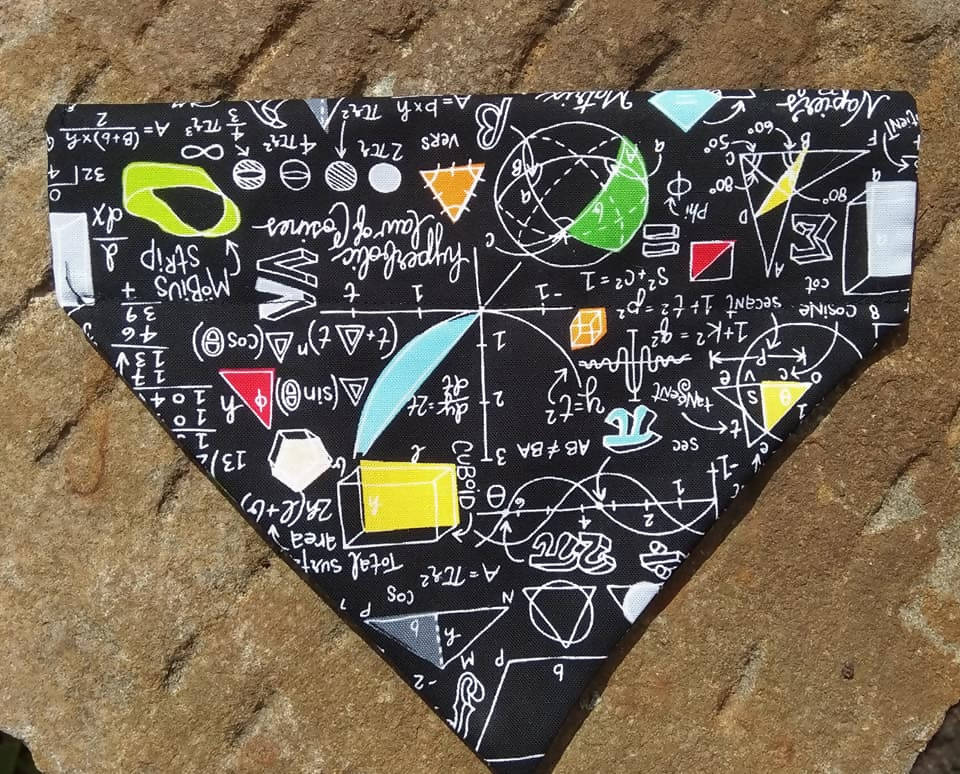 Maths Dog Scarf, Bandana for nerdy dog owner, science gift