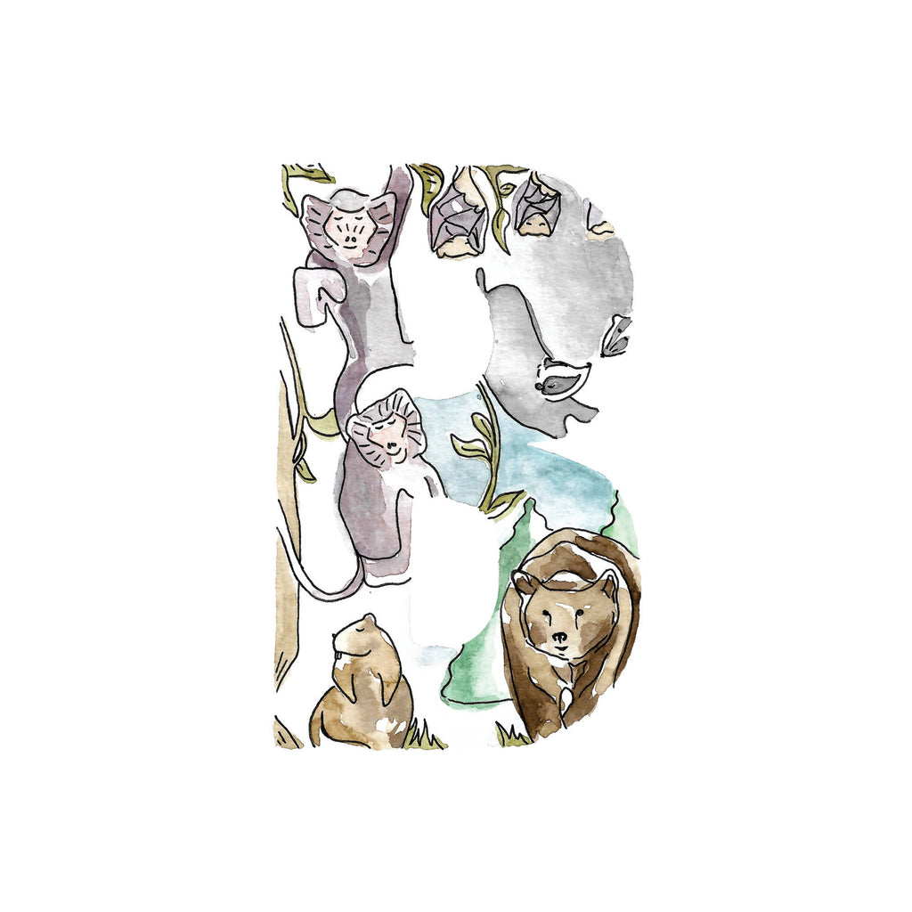 Animal alphabet initial. Letters A-D