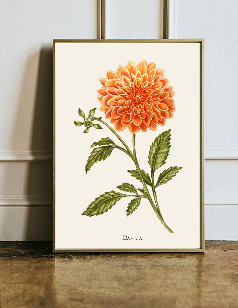 Dahlia Giclee Print - Hand Painted Artwork