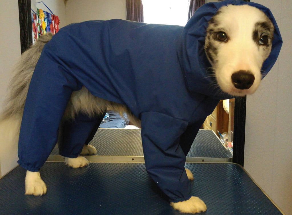 Dog waterproof all in one coat