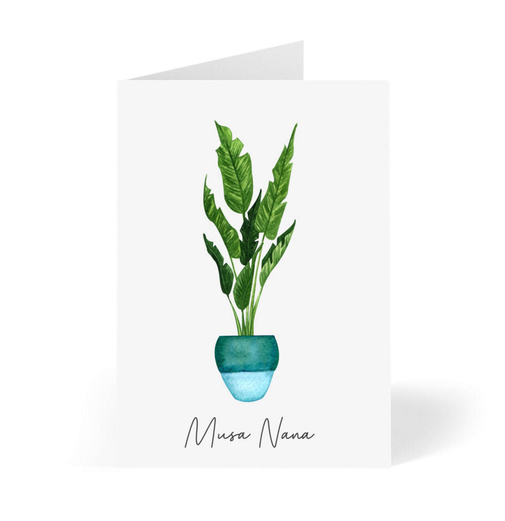 Blank houseplant cards | set of 6 botanical greeting card pack