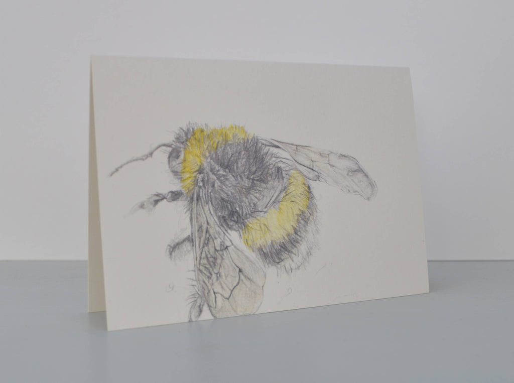 Bee drawing greetings card