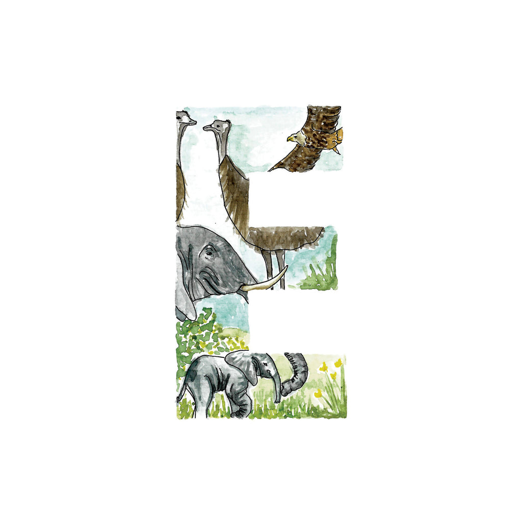 Animal alphabet initial. Letters E-H