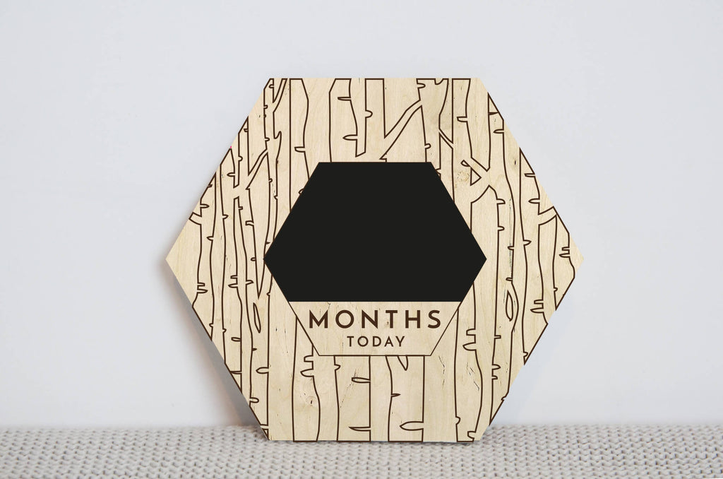 Woodland Baby monthly photo milestone disc, chalkboard milestone prop