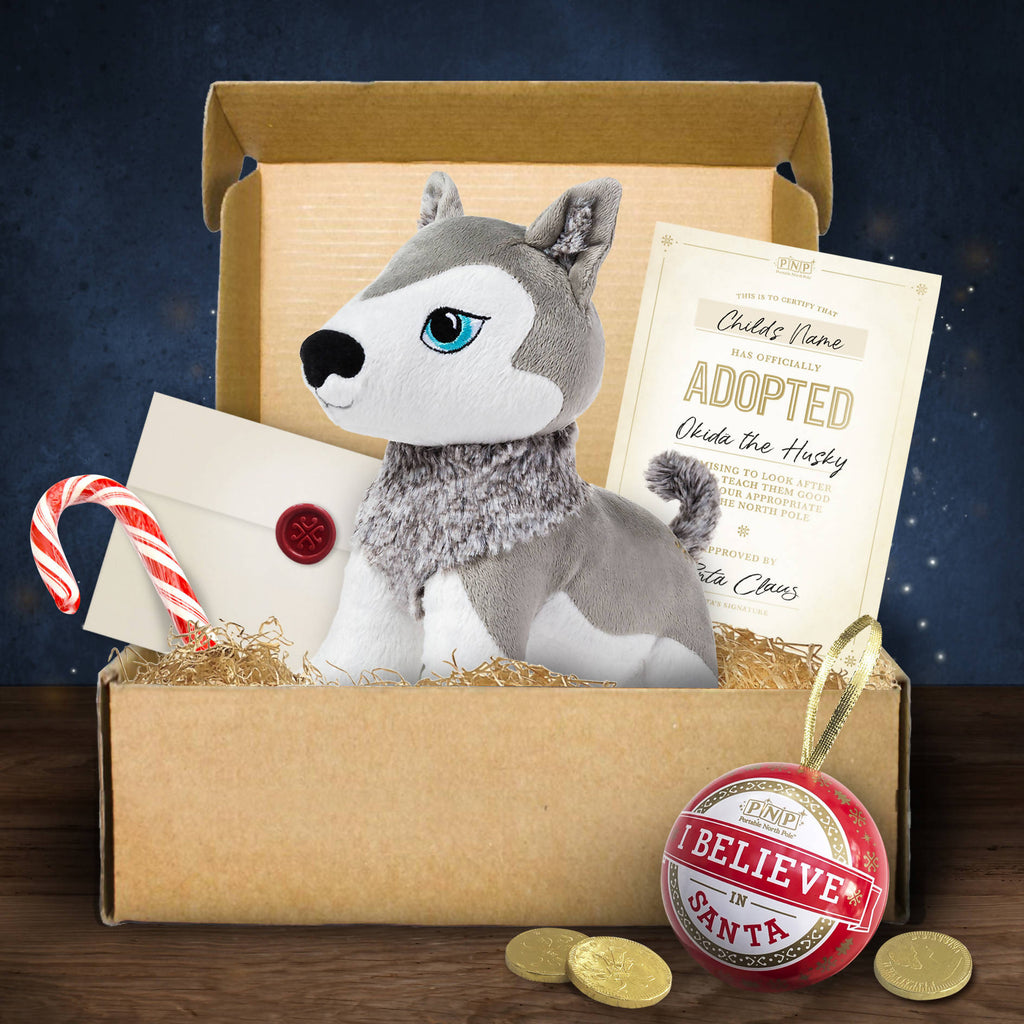 Little Husky Hamper & Santa Videos