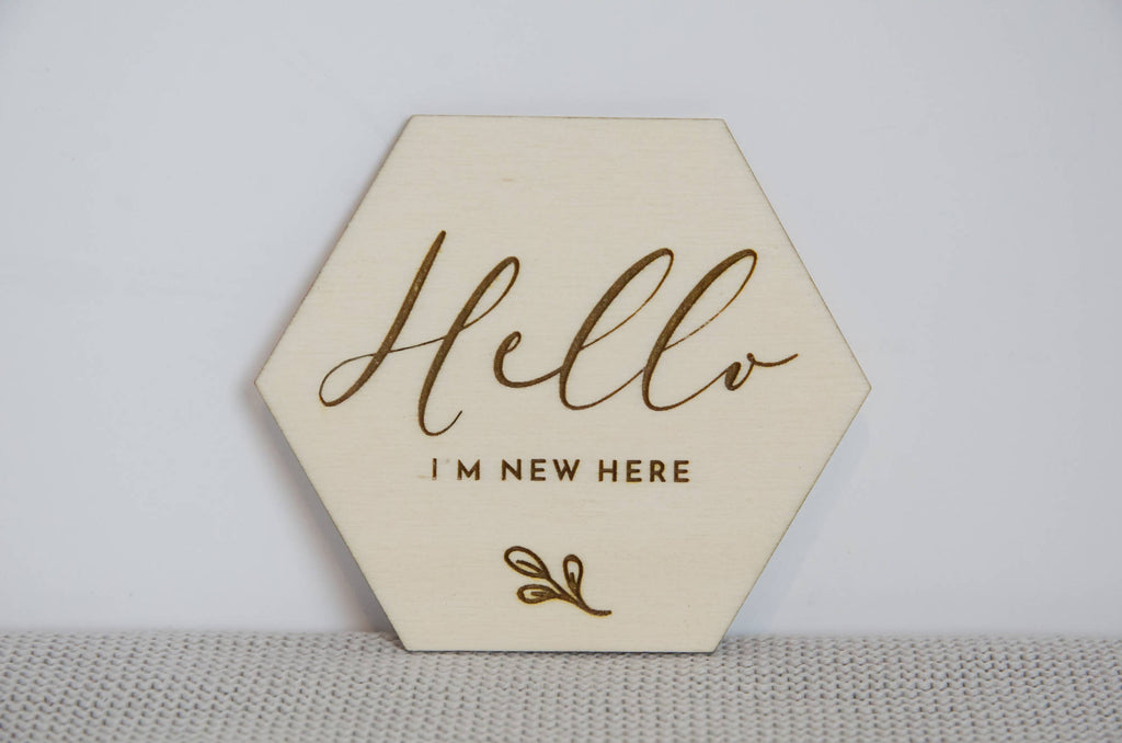 Hello world Newborn Baby announcement photo prop