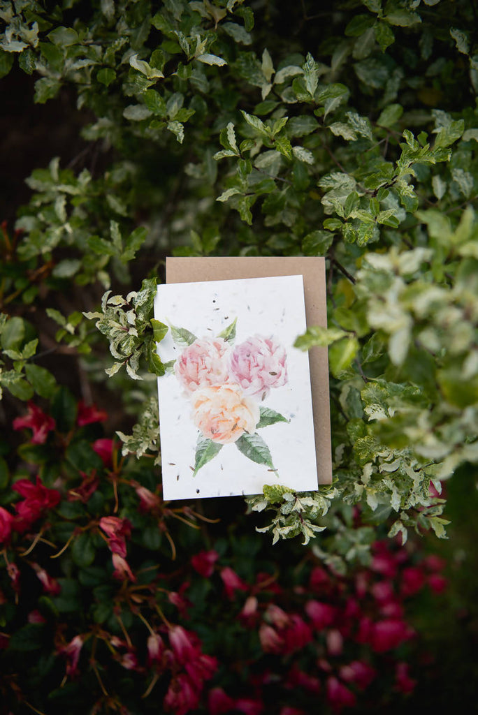 Plantable Peony Greeting Card