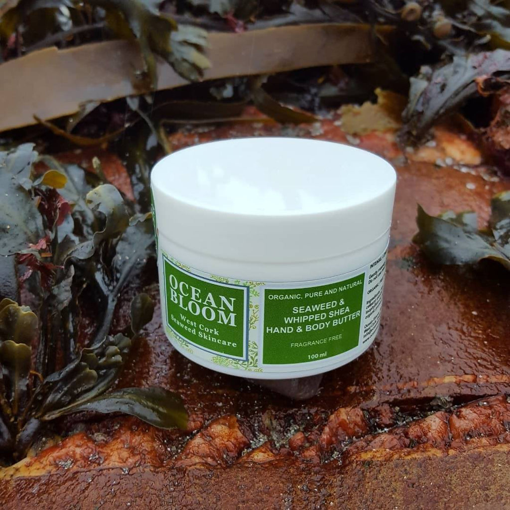 Seaweed and Whipped Shea hand and Body butter fragrance free