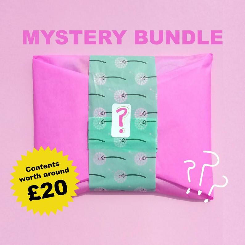 Mystery Bundle of Illustrated Goodies!
