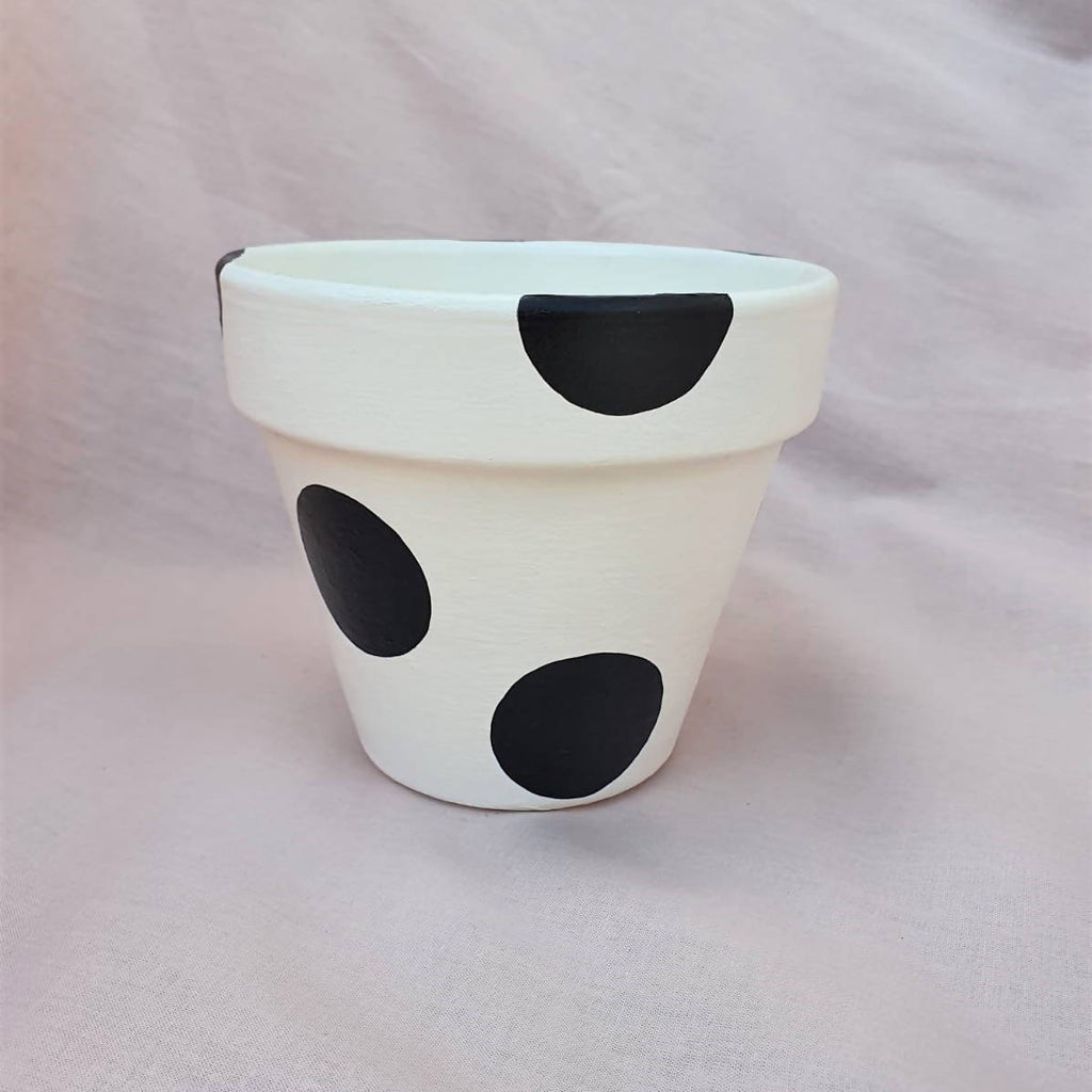 White & Black Plant Pot