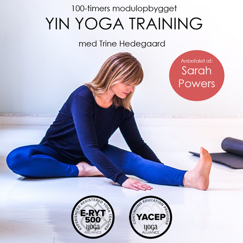 Yin Yoga Training med elev af Sarah Powers, Jo Phee & Paul Grilley