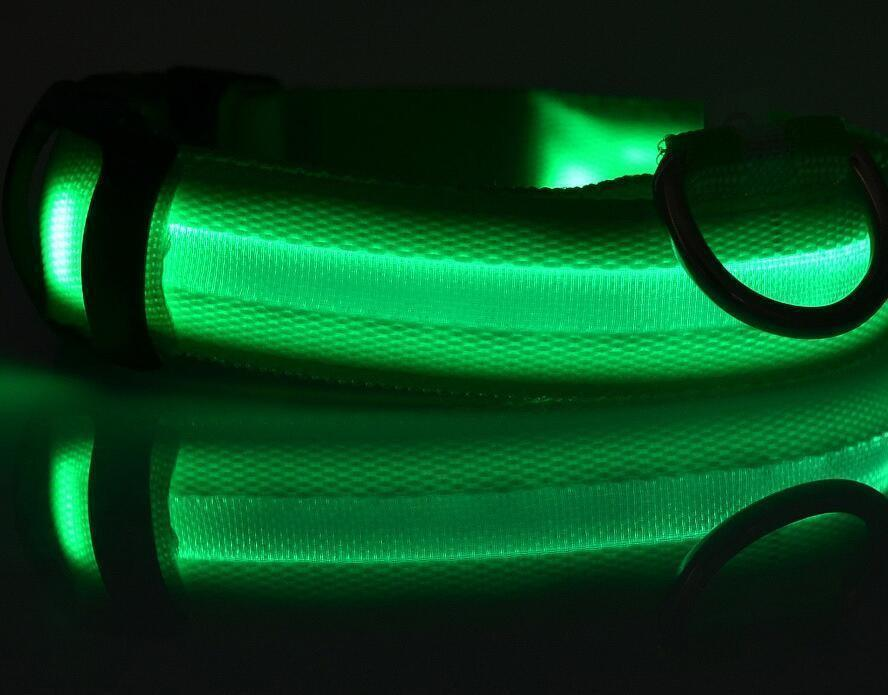 Night Safety Flashing Glow In The Dark Dog Collar