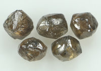 Natural Loose Diamond Rough Brown Color I1 Clarity 5 Pcs 3.02 Ct L6394