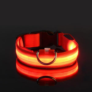 Collier LED USB