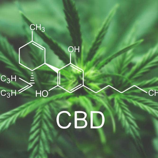 What Are The Benefits Of CBD Oil?