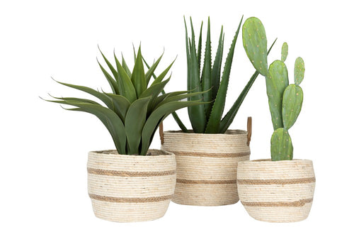 Set of 3 Maize Baskets