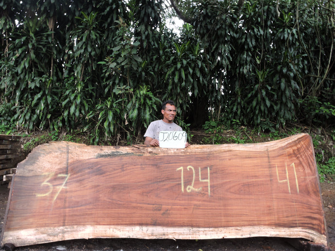 Live Edge Parota Wood Slab