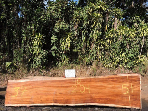 Live Edge Parota Wood Slab (Costa Rica)