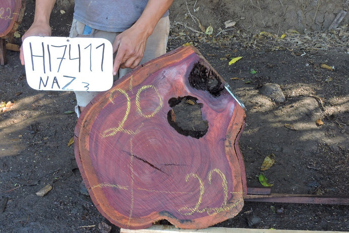 Purple Heart / Nazareno Live Edge Wood Round Slab