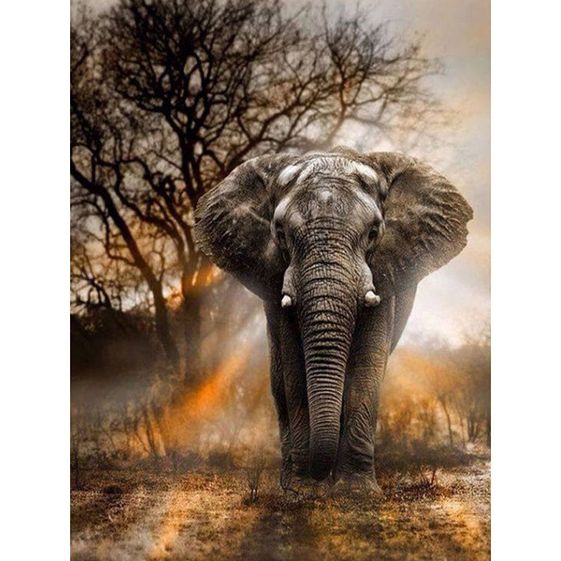 Full Square Drill -Elephant Stance - Diamond Paintings Store