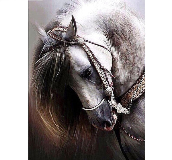 Full Square Diamond Painting - Bashful Horse -Diamond Painting Kits, Diamond Paintings Store