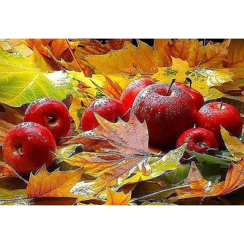 Autumn Apples, 5D Diamond Painting Kit -Diamond Paintings, Diamond Paintings Store