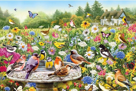 Fields of Birds and Color, DIY Diamond Painting | Full Square/Round Drill Diamond Rhinestones, Mosaic Needlepoint Diamond Art -Diamond Paintings, Diamond Paintings Store