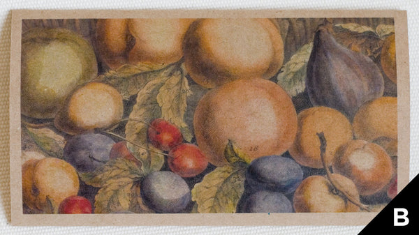 """Fruit: July"" greeting card features art depicting fruit, originally a hand-colored engraving (printed on kraft paper)"