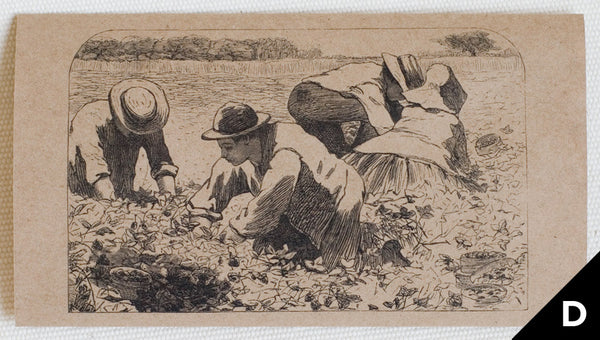 """The Strawberry Bed"" greeting card features art depicting people harvesting strawberries, originally an engraving (black print on kraft paper)"