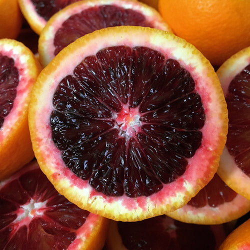 moro blood orange jam marmalade