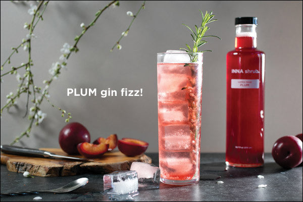Plum Gin Fizz! 1.5 ounces gin plus 1 ounce santa rosa Plum shrub and 4 ounces sparkling water.