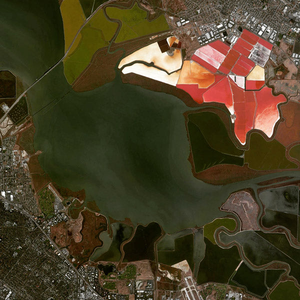 "The red color you see in the photo is a result of the high-salinity tolerating Dunaliella algae. Salt ponds in the San Francisco Bay date back to 1854. More recently (2003) most of the salt ponds were sold to state, federal, and nonprofit groups who are in the process of restoring them back to wetlands (I believe the green ""ponds"" in the bottom right of the photo are those restored wetlands)."