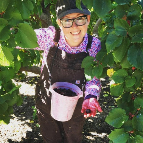 Picking black Mulberries! These berries make the most delicate savory, tart, and sweet tasting jam. We picked these ourselves in Dunnigan, California. They are so sweet right off the vine.