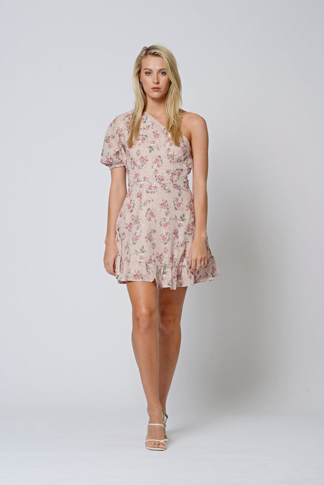 Ella Dress - MISTY ROSE