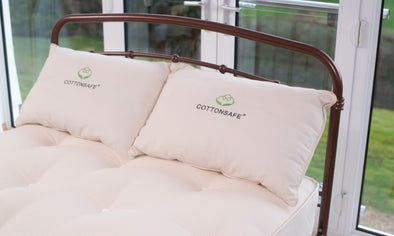 Cottonsafe® Hollow Fibre Pillow