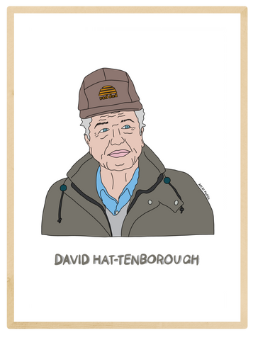 David Hat-Tenborough Print