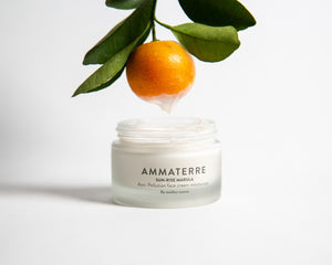 Sun Rise Marula - Day Cream