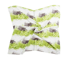 Load image into Gallery viewer, Hue Silk Scarf