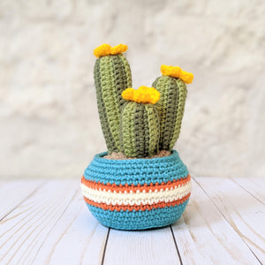 New Cozy Cactus Pattern now available!