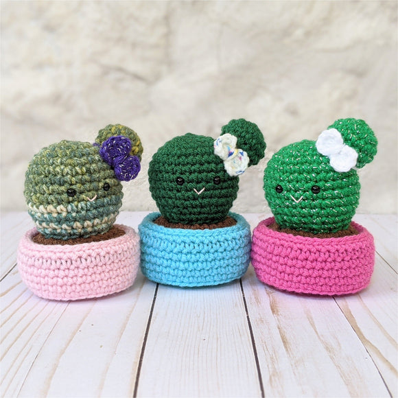 Ball Cactus with Bow