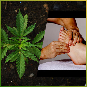 CBD_can_be_Curative_and_Therapeutic_Remedy