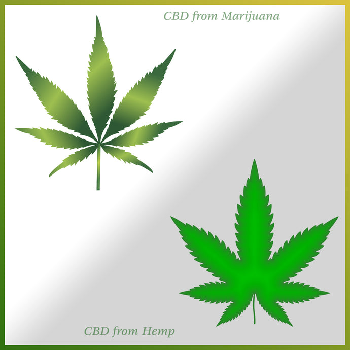 Is CBD from Hemp better than CBD from Marijuana?